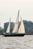 sails Fotos de Stock