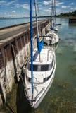 Sails boats. At a  marina near Montreal, Quebec, Canada Royalty Free Stock Photography