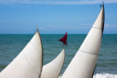Sails On A Brazilian Beach Royalty Free Stock Photography