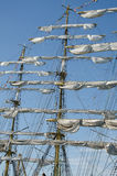 Sails on the masts Royalty Free Stock Photo