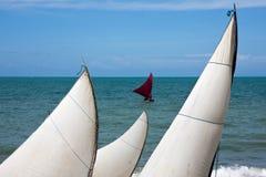 Sails On A Brazilian Beach Royalty Free Stock Photography