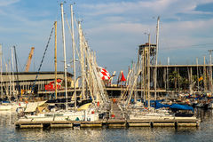 Sails in port royalty free stock image