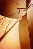 Sails in sunset light Stock Image