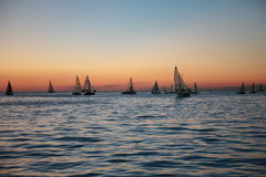 Sails in the sunset. Trieste, Italy - October 13, 2013: nice sailboatS races during the Barcolana at sunset Stock Photos
