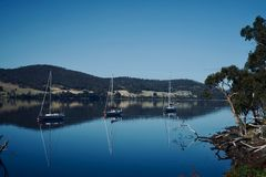 3 sails Tasmania. Three sails in the calm water of Tasmania. Australia. Relax trip in a sail in the sea royalty free stock images