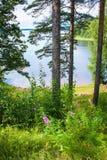 Saimaa lake, Finland Royalty Free Stock Photography