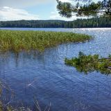 Saimaa lake Finlande. In July 2016 Royalty Free Stock Image