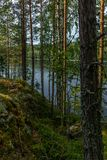 The Saimaa lake in the Kolovesi National Park in Finland seen t. Hrough the trees on its shores - 3 royalty free stock photo