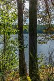 The Saimaa lake in the Kolovesi National Park in Finland seen t. Hrough the trees on its shores - 4 stock photo