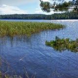 Saimaa sjö Finlande Royaltyfri Bild