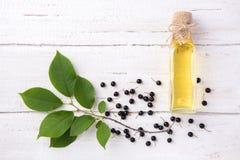 Sain et riche en huile de vitamines d'oiseau-cerise de baie sur un woode Photos stock