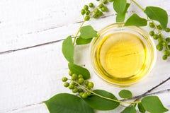 Sain et riche en huile de vitamines d'oiseau-cerise de baie sur un woode Images stock