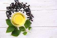 Sain et riche en huile de vitamines d'oiseau-cerise de baie sur un woode Photos libres de droits