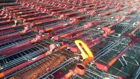 Sainsbury-Laufkatze stockfoto