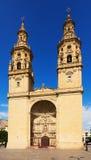 Saint玛丽亚de la雷东达岛共同大教堂在Logrono,西班牙 免版税图库摄影