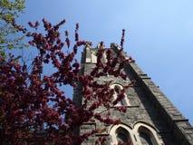 Saint Agnes, Roman Catholic Church Stock Photos
