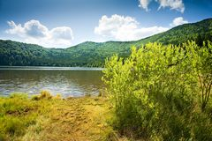 Saint Ana volcanic lake in Romania Stock Images