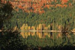 Saint Anna湖 免版税图库摄影