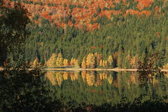 Volcanic lake autumn landscape - Saint Anne Lake, Romania Royalty Free Stock Photography