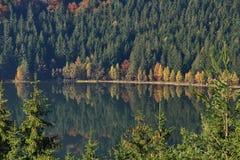 Volcanic lake landscape - Saint Anna Lake, Romania Royalty Free Stock Photos