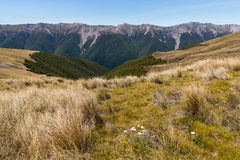 Saint Arnaud Range in New Zealand. Saint Arnaud Range in Nelson Lakes National Park, New Zealand Royalty Free Stock Photography