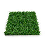 Saint Augustine Warm Season Grass sur le blanc illustration 3D illustration stock