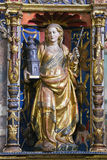 Saint Barbara in the Old Cathedral of Salamanca Royalty Free Stock Photos