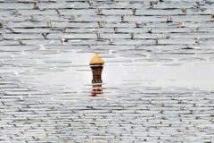 Saint Basil& x27; catedral de s em Moscou, Rússia Reflexão abstrata da água imagens de stock