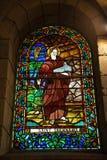 Saint Bernard beveled glass Royalty Free Stock Photography