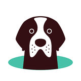 Saint Bernard dog on the hole,watching, vector illustration. Saint Bernard dog on the hole,watching  vector illustration Stock Images