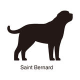Saint Bernard dog silhouette, side view, vector Royalty Free Stock Photography