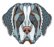 Saint Bernard dog zentangle stylized head, freehand pencil, hand Stock Photos