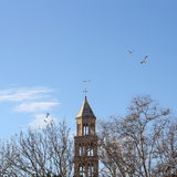 Saint Domnius Tower, Split Royalty Free Stock Images