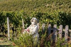 Saint Emilion Frankrike - September 8, 2018: Staty av en pojke som rymmer en korg med druvor på bakgrunden av vingårdar i Sainen arkivbilder