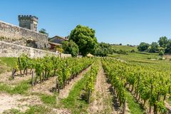 Saint Emilion, Gironde, France. Vineyards around the village. Ruins and vineyards in Saint Emilion,near Bordeaux in France, known for its famous wines royalty free stock image
