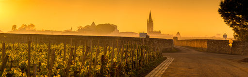 Saint Emilion Sunrise, Bordeaux Vineyard, France. Europe royalty free stock images
