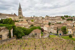 Saint-Emilion village and vineyard. French vineyard with the village of Saint Emilion in the background royalty free stock photo