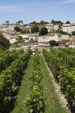 Saint emilion vineyard. French vineyard with the village of Saint Emilion in the background royalty free stock photography