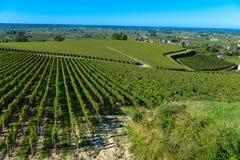 Saint-Emilion-Vineyard landscape-France Stock Photography