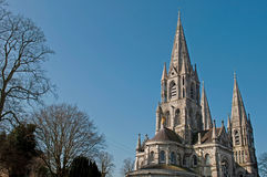 Saint Fin Barre's Cathedral Stock Photography