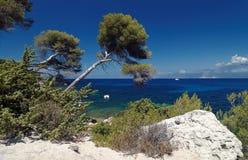 Saint florent bay Royalty Free Stock Photo