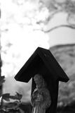 Saint Francis of Assisi Statue Royalty Free Stock Photography