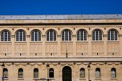 Saint Genevieve de Bibliotheque à Paris Image libre de droits