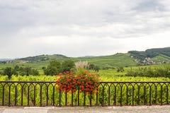 Saint-Hippolyte (Alsace) - Landscape Stock Images