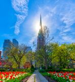 Saint James Cathedral in the morning, Toronto, Canada Stock Photography