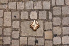 Saint james shell symbol Royalty Free Stock Images