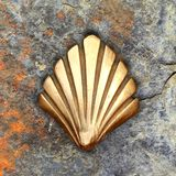Saint James way shell golden metal on streets Royalty Free Stock Photos