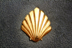 Saint James way shell golden metal on streets Stock Images