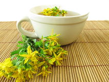 Saint John's wort tea Royalty Free Stock Images