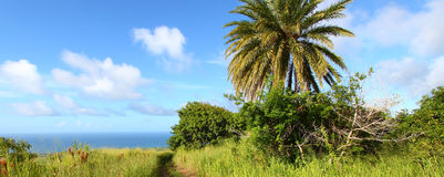 Saint Kitts Landscape Stock Photos